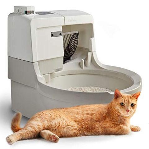 cleaning cats litter box 2