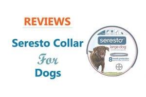 Seresto Collar Review