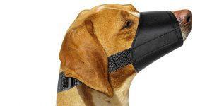06 ewinever dog muzzles suit