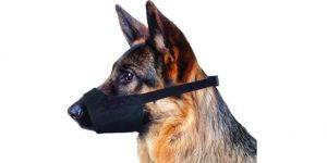 07 four paws walk about quick fit dog muzzle 585x293