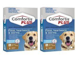 Comfortis Plus 4