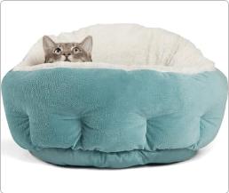 Screenshot 2020 01 16 Top 10 Cat Beds of 2019 Video Review12