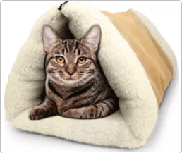 Screenshot 2020 01 16 Top 10 Cat Beds of 2019 Video Review3