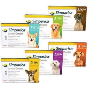 Simparica for Dogs 1