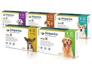 simparica for dogs 4