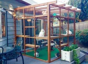 Construct Your Pet Enclosures