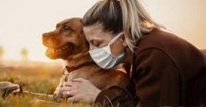 VIP Pet Care 2
