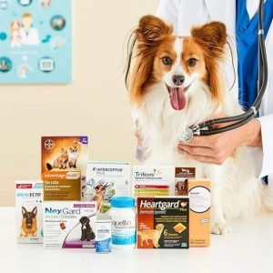 Web For Pet Medications