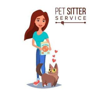 CAT SITTER 3