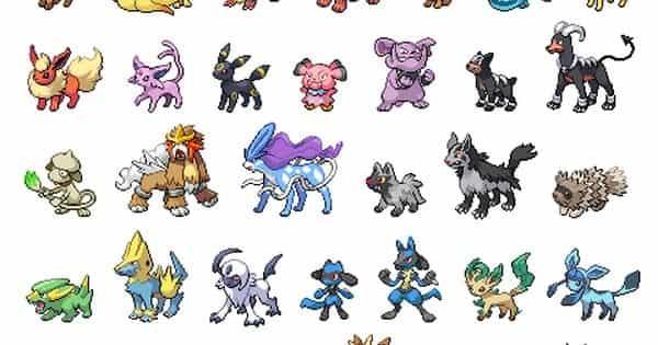 Dog Pokemon 3