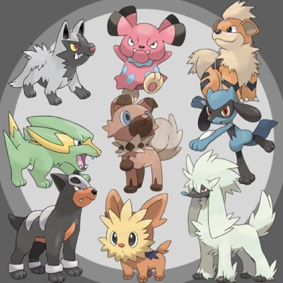 Dog Pokemon 4