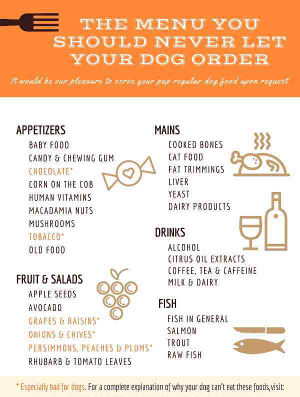 foods dogs cant eat