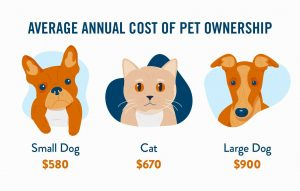 average-annual-cots-of-pets