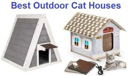 Best Outdoor Cat Houses 2