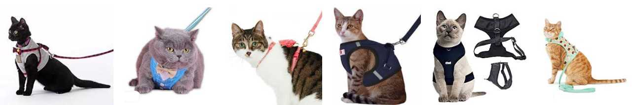 CAT HARNESSES