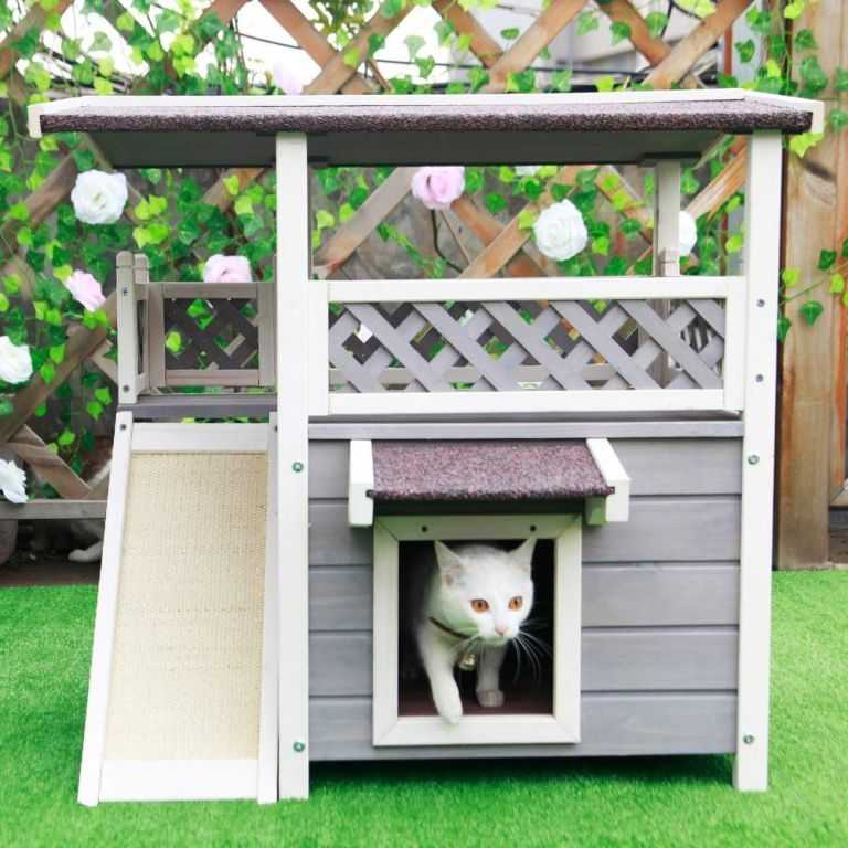 Outdoor cat house 2
