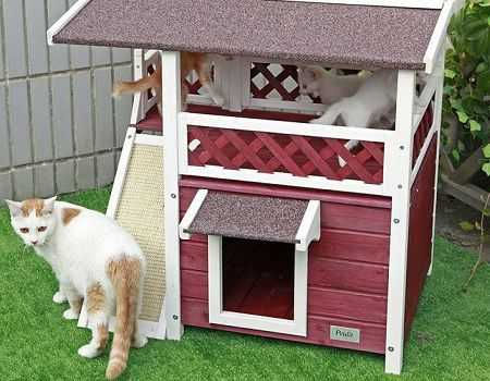 Weatherproof Outdoor Cat House
