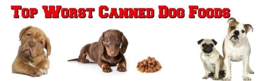 worst canned dog food