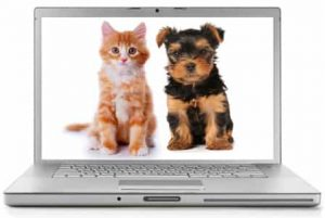 Best Pet Blogs 3