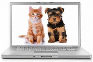 Best Pet Blogs 3