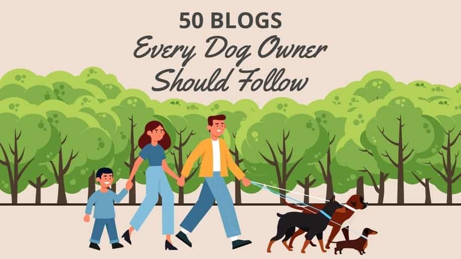 Best Pet Blogs