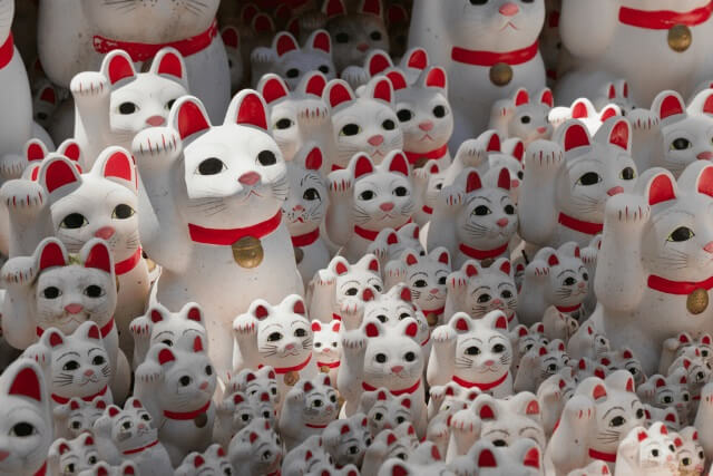 Japanese Cat Names 5