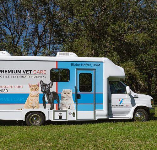 Vet Clinic on Mobile 3